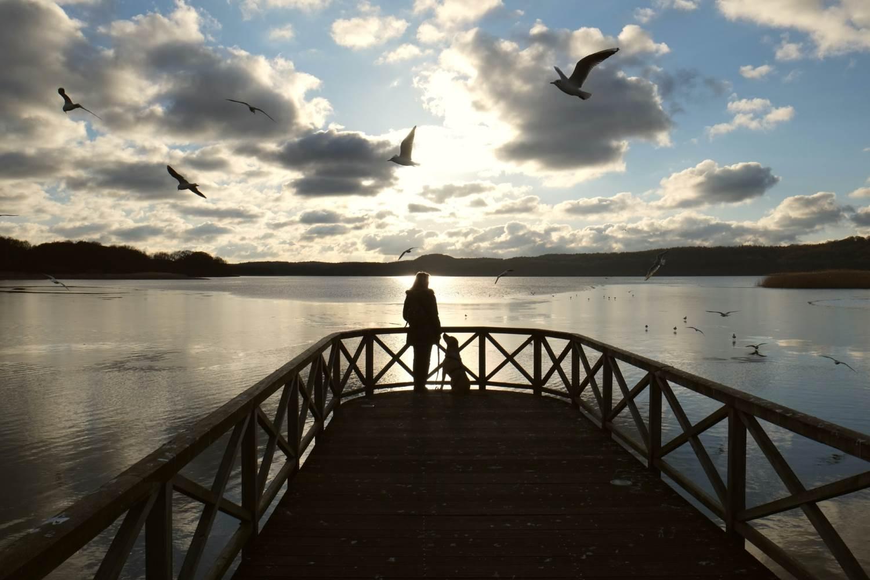 Abends am Schmachter See © Lars Baus 2016