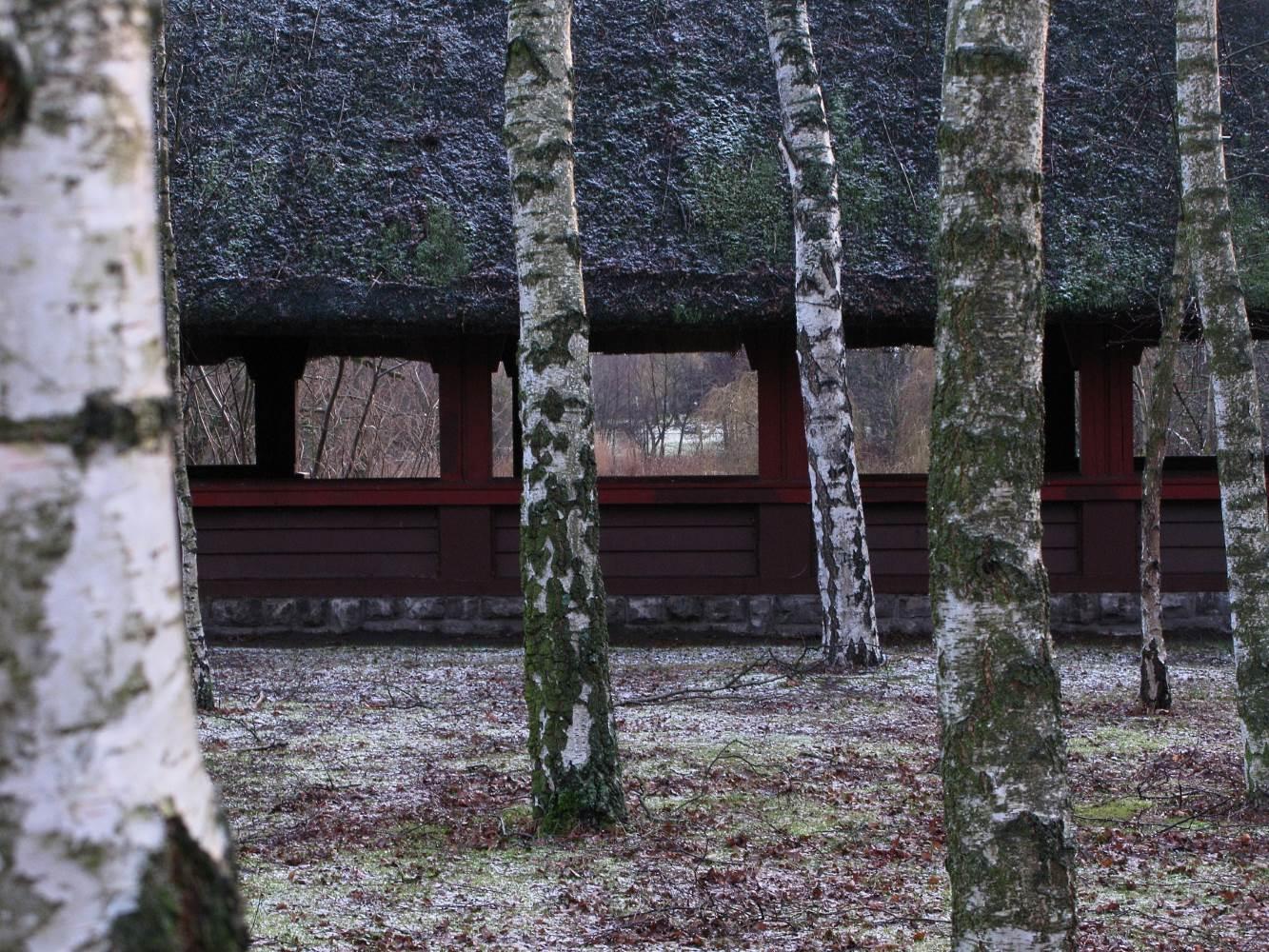 Der Birkentempel © Lars Baus 2014