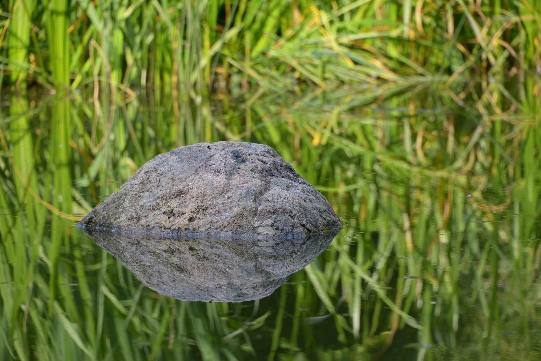 Der Fels im Teich © Lars Baus 2015