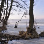 Frost am Schmachter See © Lars Baus 2018