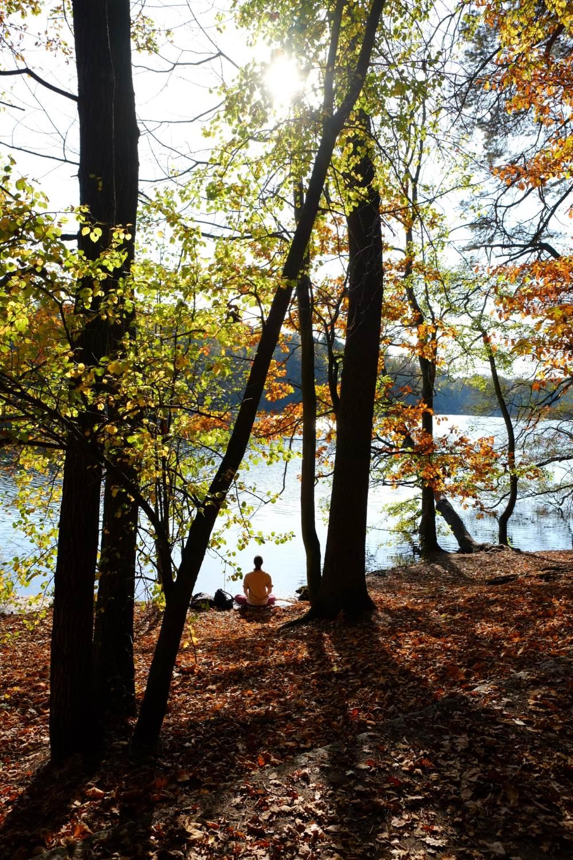 Herbst-Meditation © Lars Baus 2013