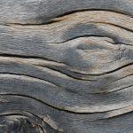 Holzmaserung © Lars Baus 2015