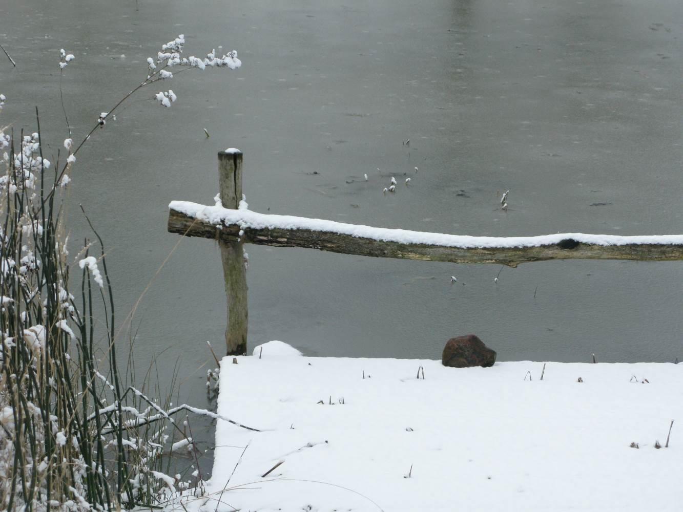 Winter am Teich © Lars Baus 2013