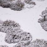 Winterliche Wege © Lars Baus 2018